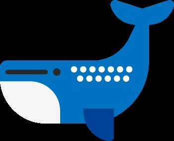Wego推薦宿霧賞鯨鯊-專業菲律賓遊學顧問團隊